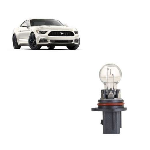 Brand New Ford Mustang P13W 13W White Bulb Globe X1